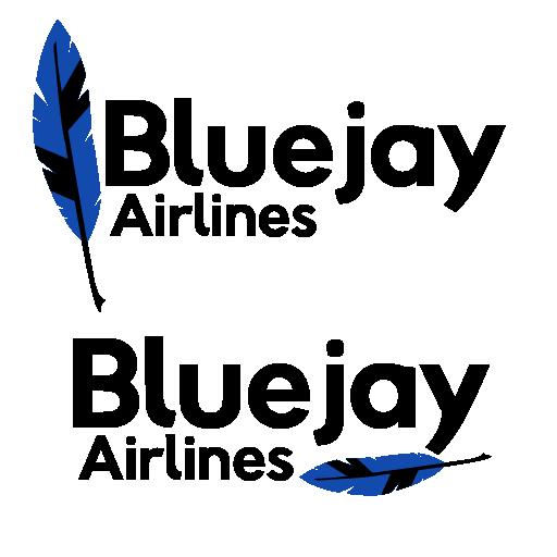 airline_logo